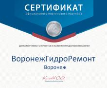 Сертификат платинового партнера